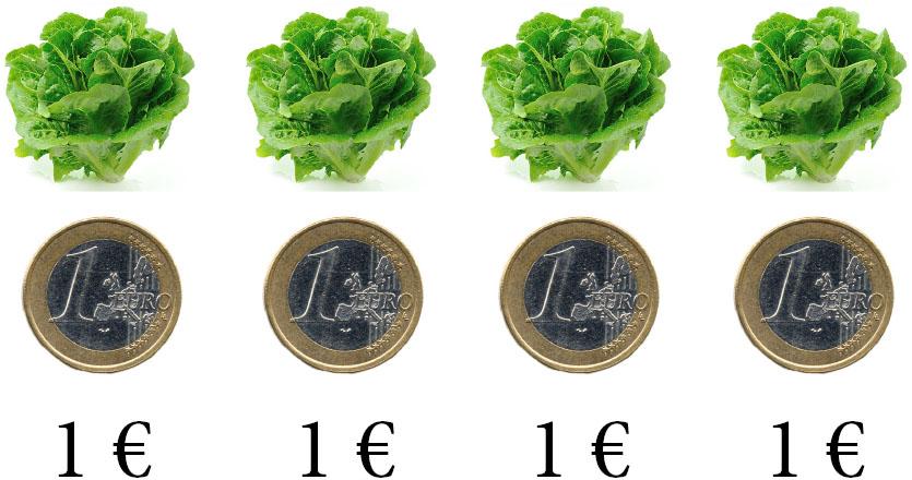 salade_prix